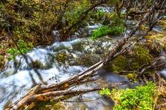 Stromen, meren, royalty-vrije stock afbeeldingen