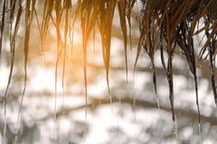 Stromen van regendaling van met stro bedekt royalty-vrije stock foto