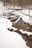 Stromend bosstroomwater in de winter. De sneeuw van de kust Royalty-vrije Stock Afbeeldingen