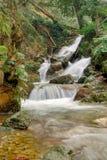 Stromend water in aard royalty-vrije stock afbeelding