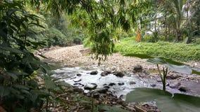 Stromend water in de rivier met rotsen en installaties stock footage