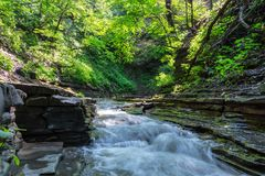 Stromend water in het bos royalty-vrije stock afbeelding