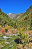 Stromend water met bomen bij de achtergrond Royalty-vrije Stock Foto
