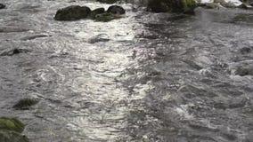 Stromend water met geluid van een kleine rivier in Zweden stock footage