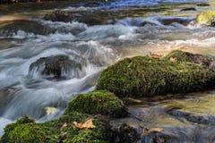 Stromend water over stenen met groen mos stock afbeeldingen
