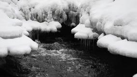 Stromend Water in Park met Sneeuw Ijskegel op Achtergrond stock footage