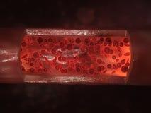 Stromende bloedcellen Royalty-vrije Stock Afbeeldingen