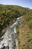 Stromende rivier. Stock Foto's