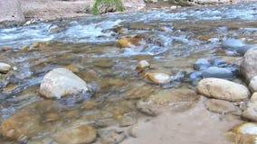 Stromende Rivier bij Zion National Park Utah Panning-Schot stock videobeelden