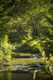 Stromende rivier over rotsen in de bergen Stock Afbeelding