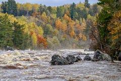 Stromende rivierstroomversnelling met kleurrijke de Herfstbomen in Jay Cooke State Park stock afbeeldingen