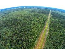 Stromleitung durch endlose Wälder Schattenbild des kauernden Geschäftsmannes Stockfotografie