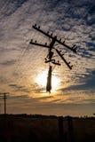 Stromleitung am Sonnenuntergang Lizenzfreies Stockbild