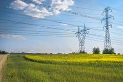 Stromleitung und Canolafeld stockbilder