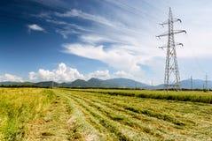 Stromleitungen über einem grünen Feld und einem blauen Himmel Lizenzfreie Stockbilder