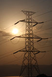 Stromleitungen Lizenzfreies Stockfoto