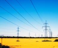 Stromleitungen auf dem Gebiet Stockfotografie