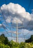 Stromleitungen vertikal Stockbild