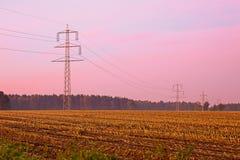 Strommasten, Kornfeld, Morgenlicht Stock Photos
