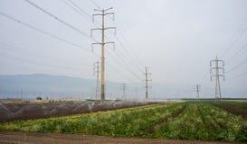 Strommasten und -linien über Ackerland Lizenzfreie Stockbilder