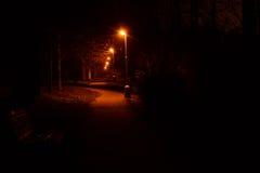 Stromovka park - Prague. Night in Stromovka park in Prague - Czech Republic Stock Images