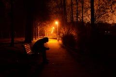 Stromovka park - Prague. Night in Stromovka park in Prague - Czech Republic Royalty Free Stock Image