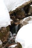 Stromrieseln Franconia-Kerben-Park einsame Seespur Stockfotos