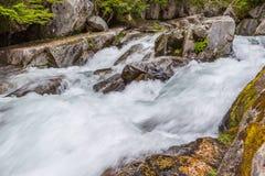Stromschnellen auf dem Paradies-Fluss, Mt regnerischer Lizenzfreie Stockfotografie