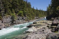 Stromschnellen im Glacier Nationalpark Stockbilder