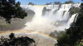 Stromschnellen Ton und Regenbogen an Iguazu-Wasserfällen stock video footage