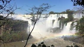 Stromschnellen Ton und Regenbogen an Iguazu-Wasserfällen stock video