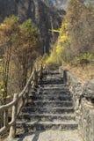 Stromy kamienny schody fotografia royalty free