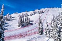 Stromy prędkości narciarstwa skłon przy pędu wyzwaniem i FIS prędkości Narciarską pucharu świata rasą przy słońcem Osiąga szczyt  fotografia stock