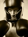 Strong aggressive boxer Royalty Free Stock Image