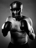 Strong aggressive boxer Royalty Free Stock Photo