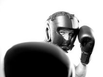 Strong aggressive boxer Stock Images