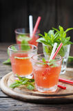 Strong alcohol cocktail with rum and mint Stock Photography
