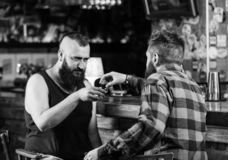 Strong alcohol drinks. Friday relax in pub. Friends relaxing in pub. Drunk conversation. Cheers concept. Hipster brutal. Bearded men drinking alcohol with royalty free stock photography