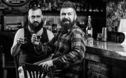 Strong alcohol drinks. Friends relaxing in pub. Friday relax in pub. Cheers concept. Hipster brutal bearded man drinking. Strong alcohol drinks. Friends relaxing stock photo