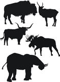 Strong animals silhouettes Stock Images