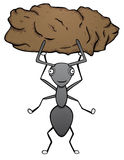 Strong ant. With symbolic strength Stock Photography
