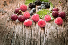 Strong antioxidant for your health - fresh organic berry fruits Stock Image