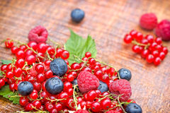 Strong antioxidants - berry fruits Stock Images