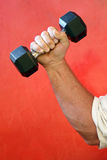 Strong arm and hand weight Royalty Free Stock Images