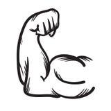 Strong arm vector hand drawn icon. Power. Stock Photos