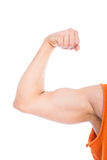 Strong arm on white Stock Photography