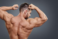 Strong athletic man back on grey background Stock Photos