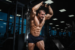Strong Athletic Man bodybuilderl Torso showing muscles in gym Stock Photo