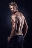Strong Athletic Man Fitness Model posing back muscles. Triceps, latissimus Stock Photo