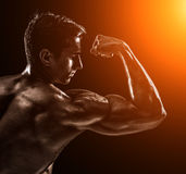 Strong Athletic Man Fitness Model posing back muscles, triceps o Royalty Free Stock Photos
